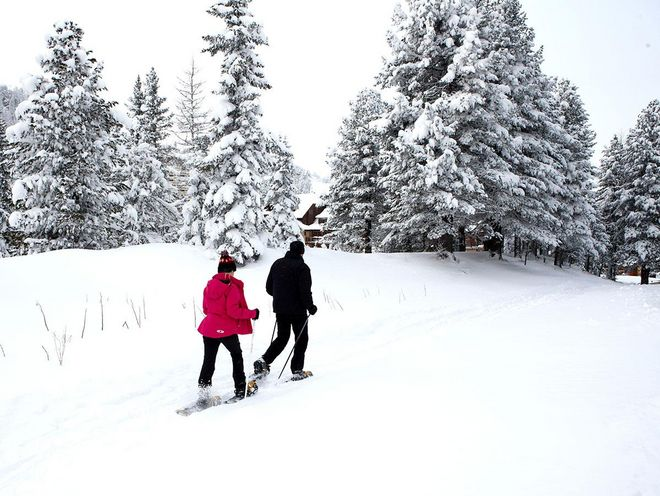 Why not explore the winter landscape with snowshoes?