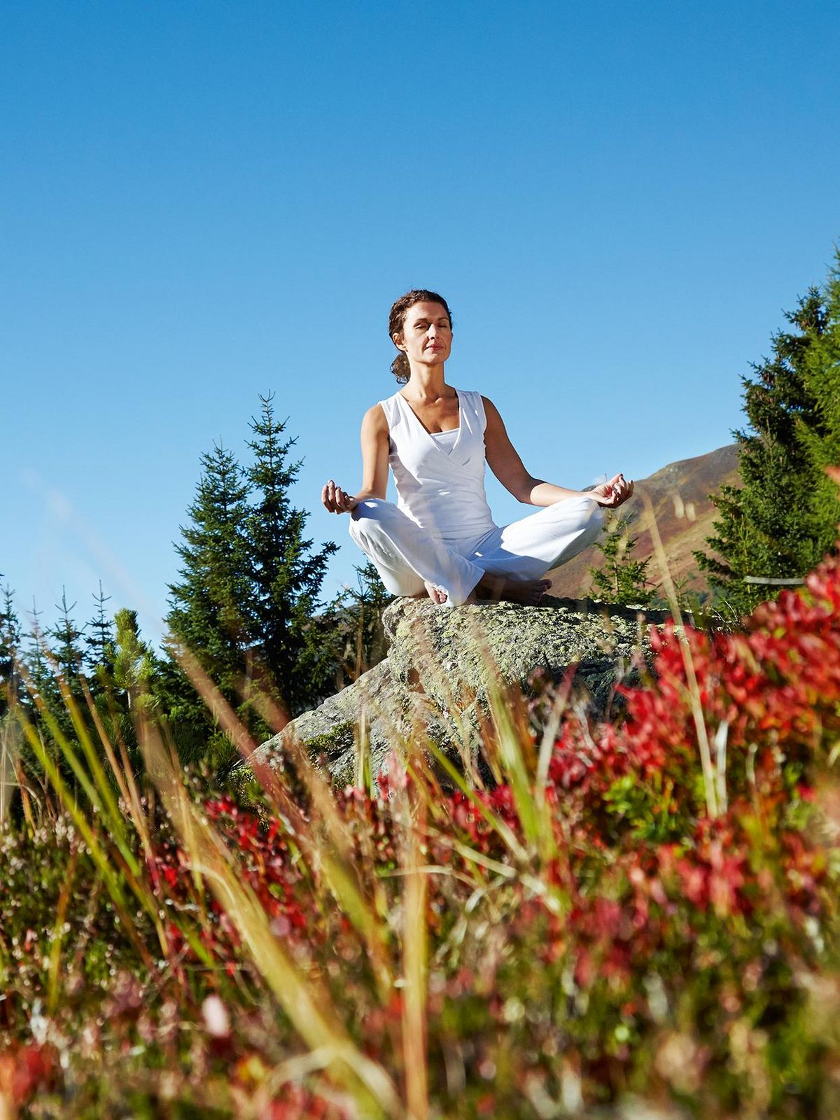 Yoga in the middle of Carinthia's nature