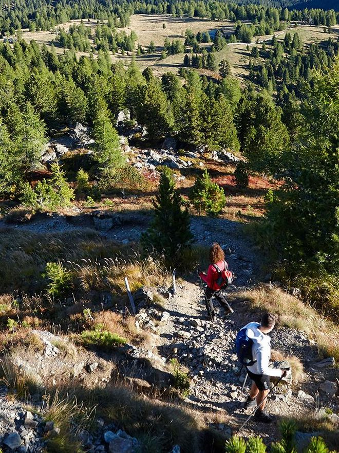 The Turracher Höhe is an extremely beautiful hiking area for your Kärnten holiday